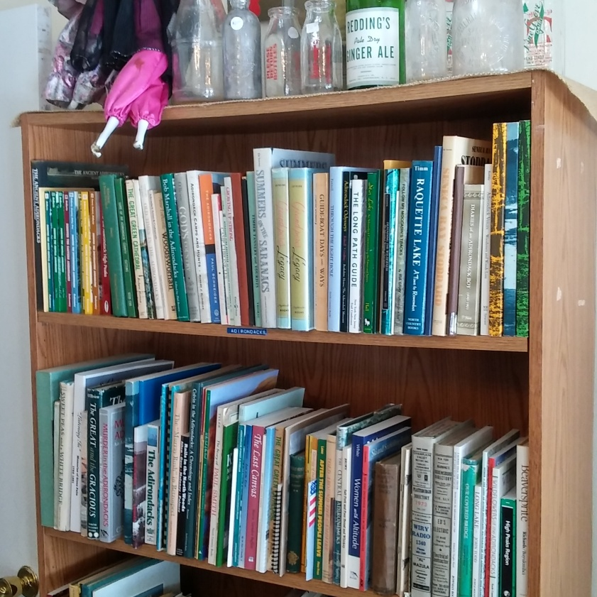 Adirondack books with local collectibles